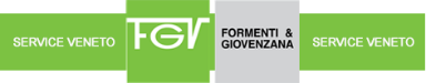 FGV Service Veneto Srl